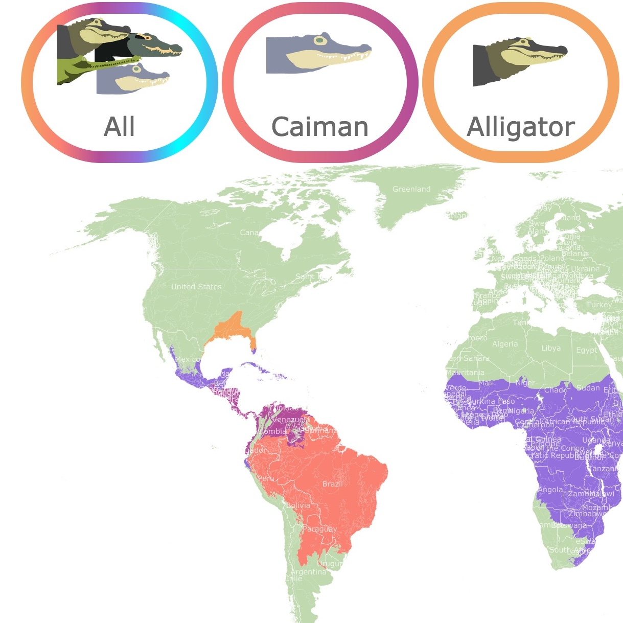 Map of crocodile groups around the World